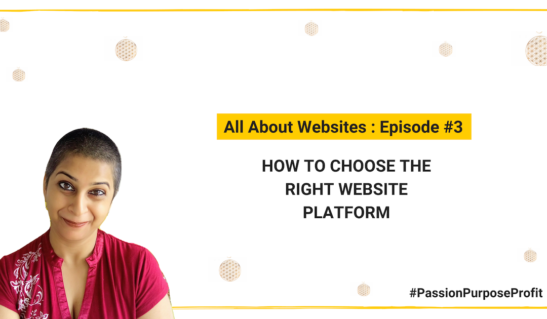 How to choose the right website platform for your biz